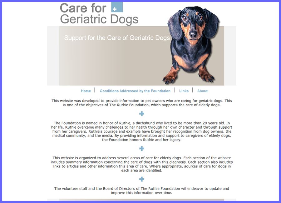 Care for Geriatric Dogs